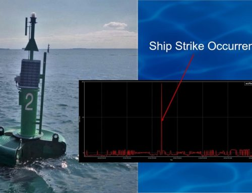 SVS-603 Wave Sensor Adds Ship Strike Alerts